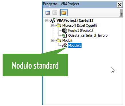 vba | modulo standard