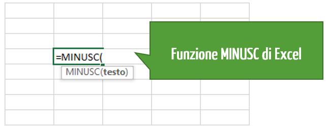 La funzione MINUSC di Excel: da maiuscolo a minuscolo | converte lettera minuscola