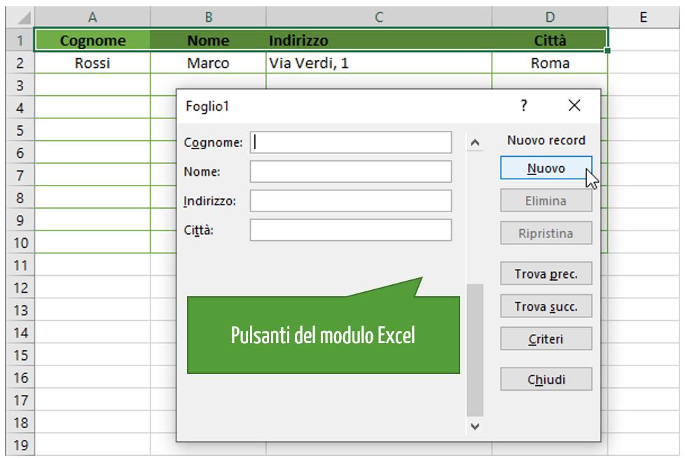 Excel modulo inserimento dati